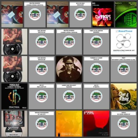 Beatport Music Releases Pack 795 (2019)