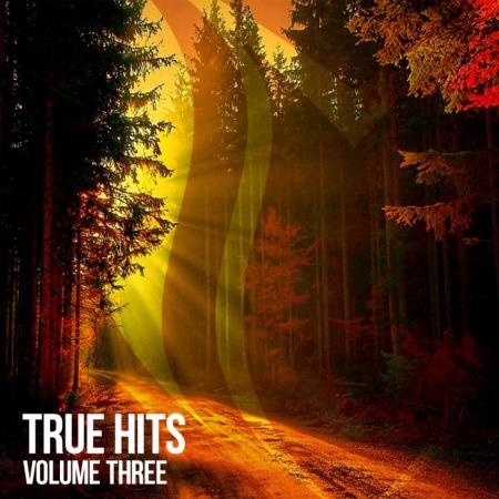 Suanda True - True Hits Vol 3 (2019)