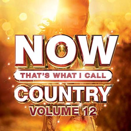 Now That's What I Call Country Vol 12 (2019) FLAC