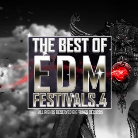The Best Of EDM Festivals. 4 (2019)