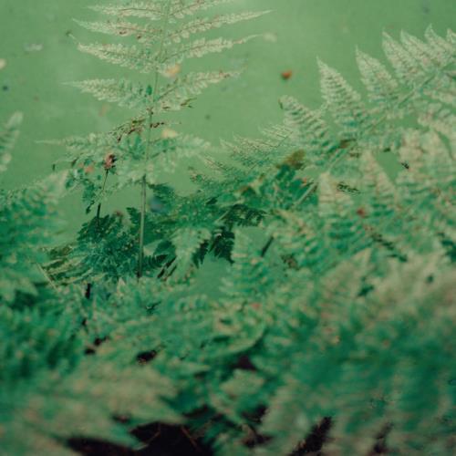 Gardens of God — Soundtrack For The End (2021)